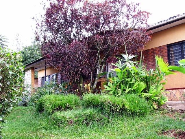 Unser gemietetes Haus in Kigali, von schräg unten vom Garten her