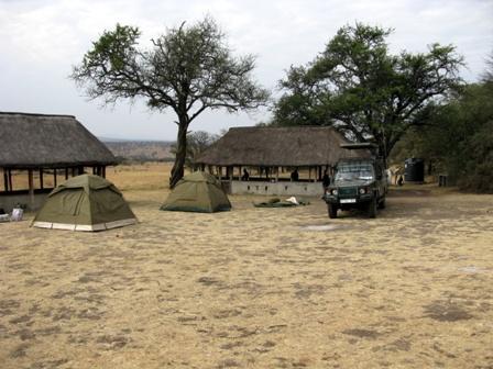 Im Serengetipark haben wir auf der Lobo-Campsite unsere Zelte aufgeschlagen.